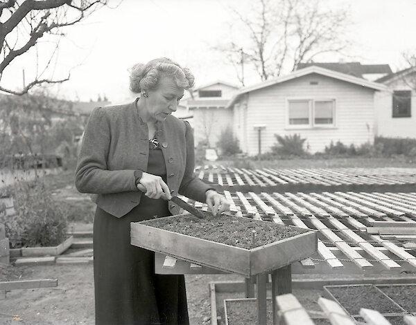 Helene Wolf, Foto: Kent 1949, Hayward Area Historical Society